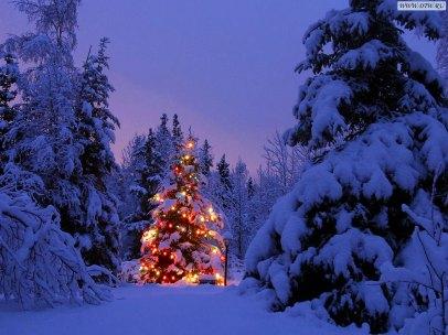 christmas-72